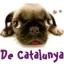 Carlinos de Catalunya